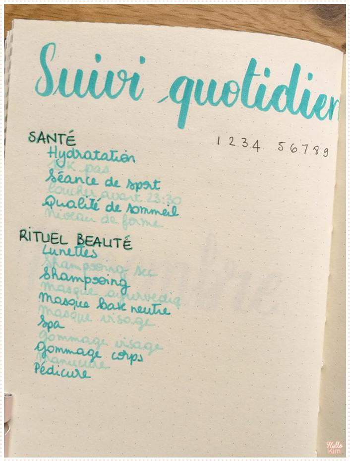 Bullet journal, suivi quotidien de la santé et du rituel beauté, liste des points